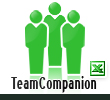 TeamCompanion for MS Excel